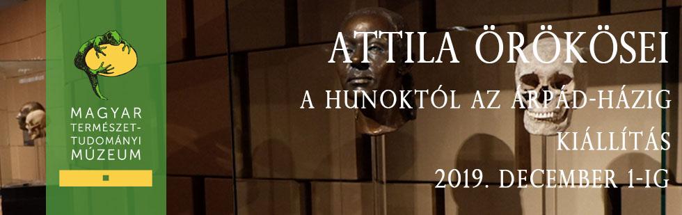 Attila orokosei_uj